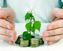 Деньги и дерево